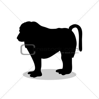 Baboon ape primate black silhouette animal
