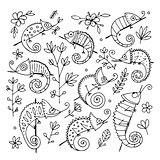 Chameleon collection, sketch for your design