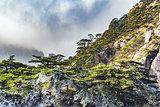 Huangshan National park.