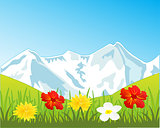 Snow mountains and glade with flower