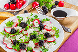 parsley, blackberry, radish,  goat cheese salad with toast