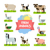 Farm Animals Set. Illustration in Flat Design.