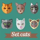 Set of cat faces