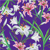 Seamless pattern with flowers. Iris. Lily. Vector. Hand drawn. Violet background