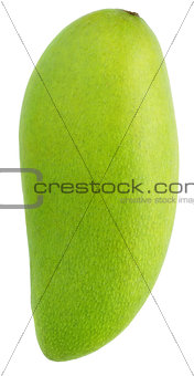 green mango fruit isolated on white