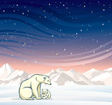 Polar bear with baby and winter landscape at night.