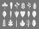 Set of white Paper Flower and tree leaves isolated on gray background. Vector eps 10 format.