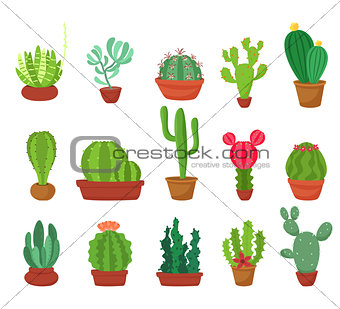 Cactus flat style. Vector illustration.