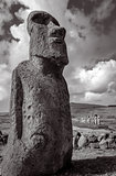 Moai statue, ahu Tongariki, easter island. Black and white pictu