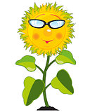 Cartoon of the plant sunflower