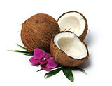 arrangement with coconuts