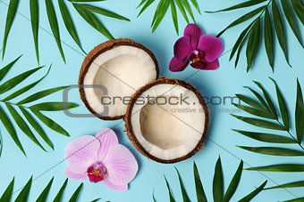 beautiful tropical composition