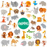 cartoon animal characters big set