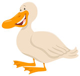 cute duck animal character