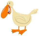 duck bird animal character