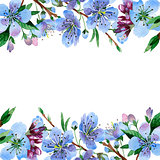 Wildflower cherry flower frame  in a watercolor style isolated.