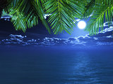 3D palm tree fronds looking out to a night time ocean