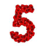 Rose Petals Realistic Number Vector Illustration