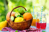 Mix of fresh citrus fruits in basket and juice