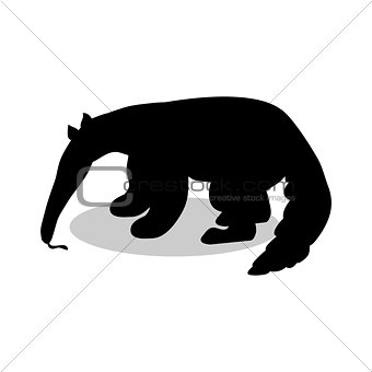 Anteater mammal black silhouette animal