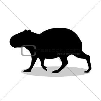 Capybara rodent mammal black silhouette animal