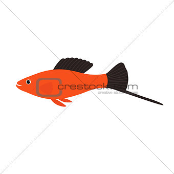 Aquarium fish swordtail, vector illustration