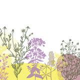 Colorful summer floral background