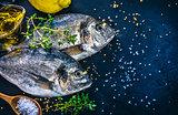 Fresh fish dorado top view spicy herb