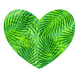 Green tropical heart