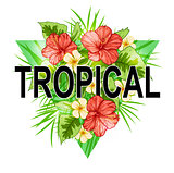 Abstract triangle tropical background