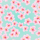 Pink flower, sakura seamless pattern. Japanese cherry blossom for fabric textile design.