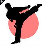 Martial arts. Karate fighter high kick.