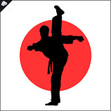 Martial arts. Karate fighter high kick.