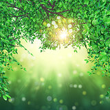 3D leaves on bokeh lights background