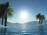 3D palm trees and ocean