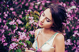 Portrait of young beautiful woman posing among blooming apple trees