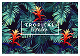Floral horizontal postcard design with guzmania flowers, monstera and royal palm leaves. Exotic hawaiian vector background.