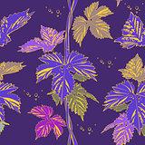 Abstract purple vine liana leaves hops