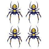 Sprite sheet of crawling spider, game art animation