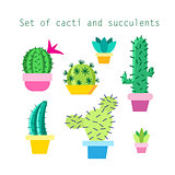 Vector set of different cacti