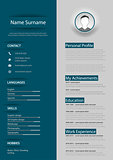 Professional blue gray resume cv with design elements