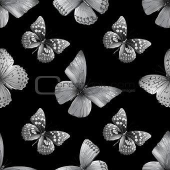 baterflay colored-black01