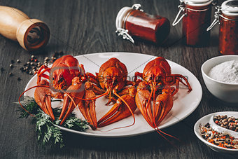 Three boiled fresh crawfish in white plate with green herbs