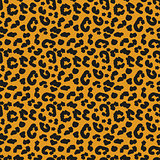 Leopard skin seamless pattern. African animals concept endless background, repeating texture. Vector illustration.