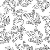 Hops seamless pattern, hand drawing, doodle style. Outline repeating texture, endless background. Brewing concept. Vector illustration.