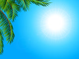 Tropical landscape background with palm tree