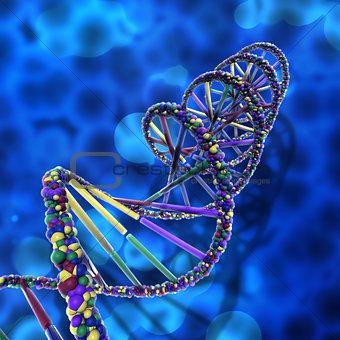 3D DNA strands