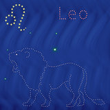 Zodiac sign Leo contour on the starry sky