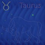 Zodiac sign Taurus contour on the starry sky