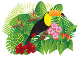 Toucan in Tropical Forest with Foliage and Flowers Color Illustr